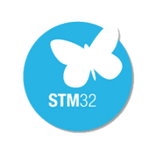 Jasa program STM32
